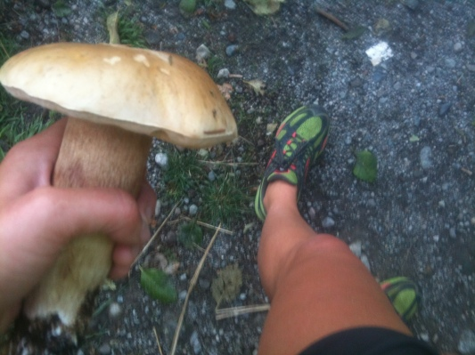 Running with mushrooms