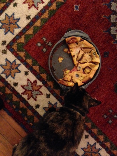 plum clafouti and kitty